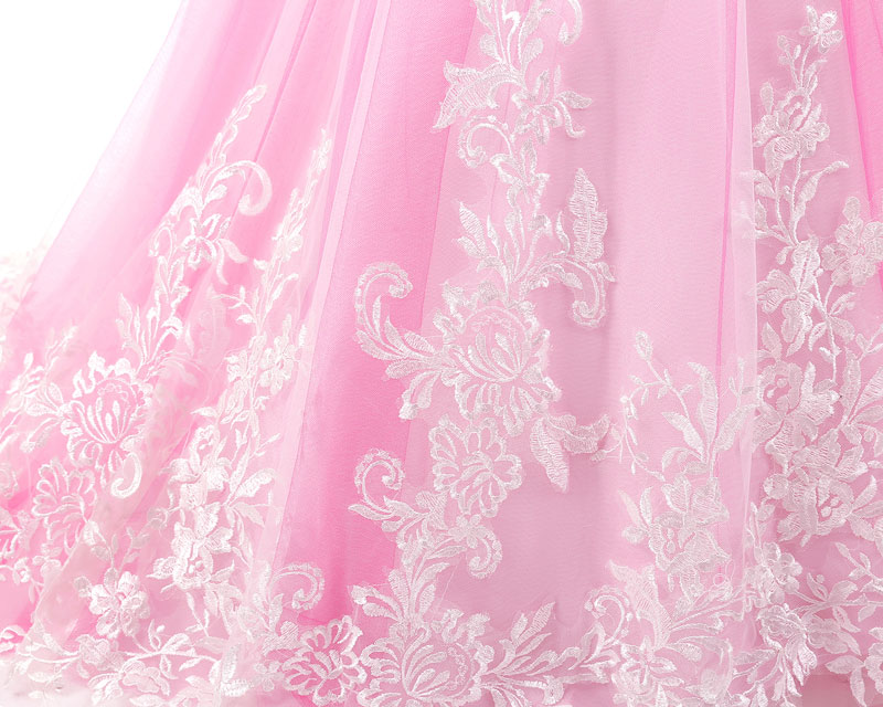 Rose Pink Lace Appliques Lovely Flower Girl Dresses Kids Evening Gowns Long Sleeve First Communion Dress With Small Train C