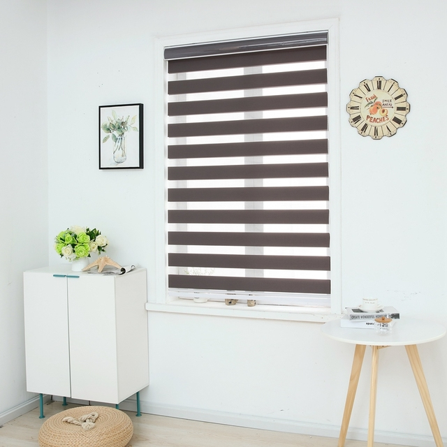 Zebra Blinds Horizontal Window Shade Double Layer Roller Custom Cut To Size Dark Grey