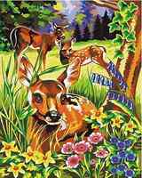 Paint By Number DIY Digital Oil Painting 12*16 Home Decor Lovely Deer