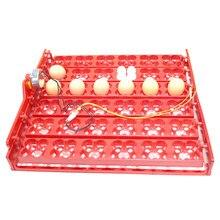 Bandeja de incubadores para ovos 36 ovos/144, bandeja para aves, 1/240 rpm ou 2.5 r/min, patos e porcos outros pássaros papagaio codornas