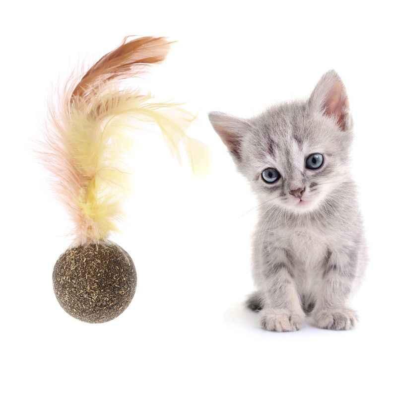 Nature Chaton Chat Caractéristique Jouet Dents De Nettoyage Chat Cataire Boule Pet Accessoires