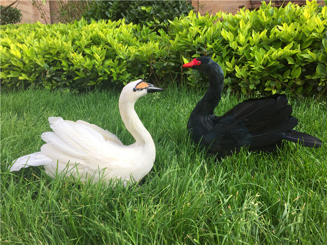 large 40x30cm simulation swan hard model foam&feathers swan stage prop,home garden decoration gift s2697 simulation owl toy black feathers night owl bird large 34cm hard model home decoration birthday gift h1150