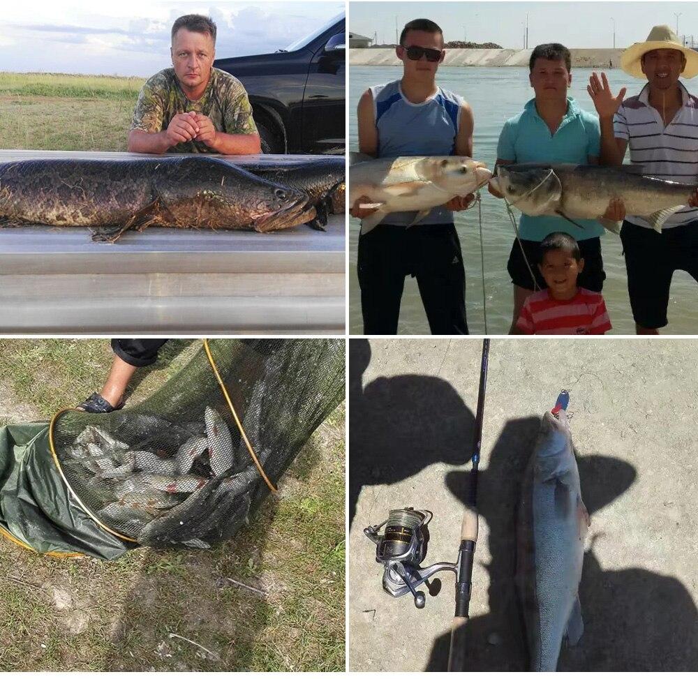 Água Doce Carpa fishng 9 + 1