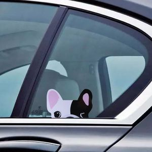 Image 5 - מדבקות לרכב מצחיק חמוד צ יוואווה צרפתית בולדוג רעיוני מדבקת עבור אאודי S Sline Bmw M3 מיני חכם Fortwo וכו