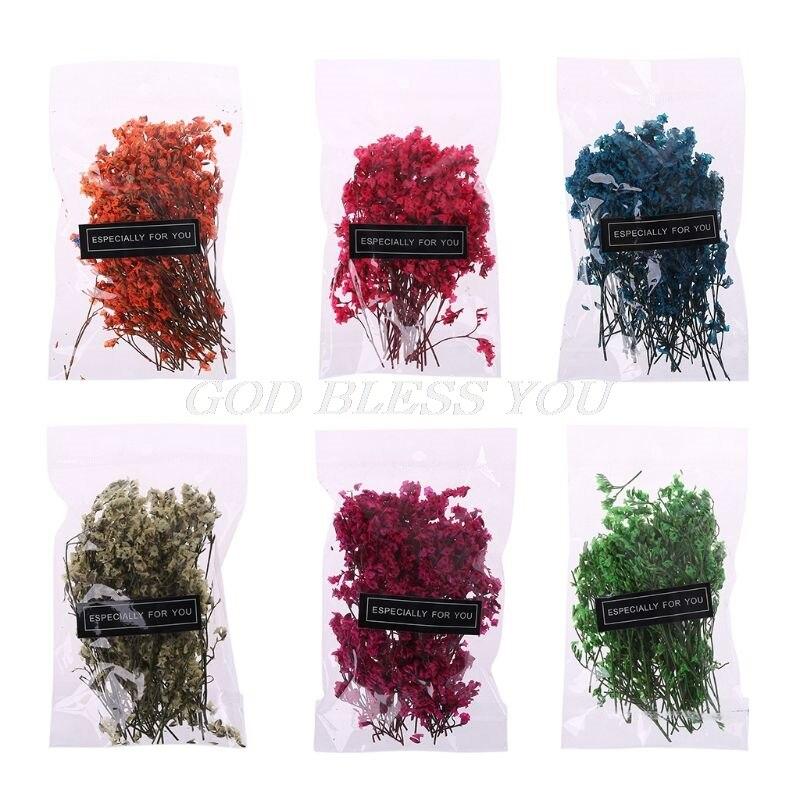 1 сумка, прессованный высушенный цветок, цветочные растения, украшения для скрапбукинга своими руками, художественное оформление