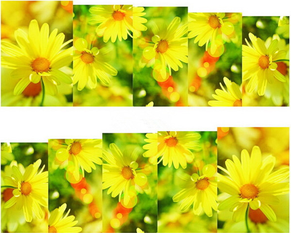 Water Transfer Nail Art Stickers Decal Cute Yellow Daisy Flowers Garden Design Diy French Manicure