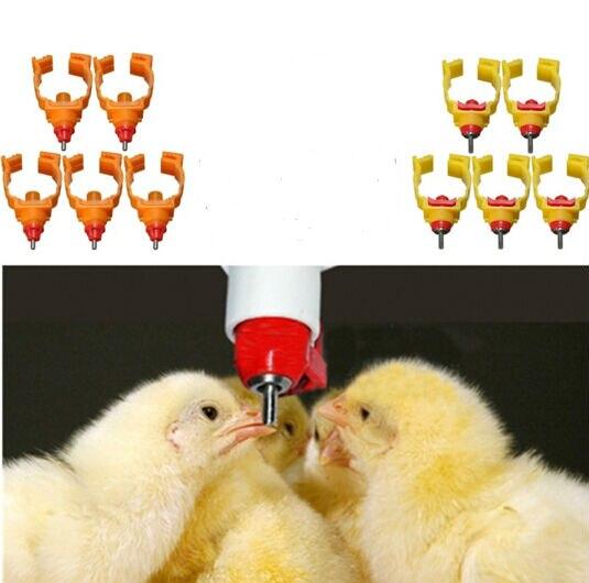 Fashion 3D poule CHOOK Poulet perle en cage plaqué argent Médaillon Collier Pendentif