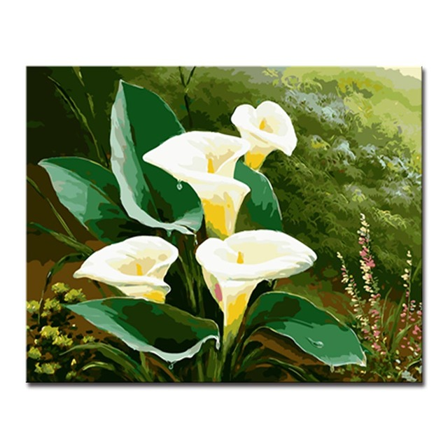 Diy Oil Painting By Numbers Kits Coloring Handpainted Home Decor Calla Lily Flowers Green Leaves Canvas