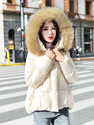 Manteau Xxl Vers Veste Le Danemark Petit 2018 Style Fourrure noir Col Homme De Cent Grand Canard Blanc Coréenne Beige Courte rose 90 Bas Nouveau Mode Hiver Pour Femelle YqSqwd