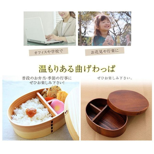 Japanese Style Food Preservation Lunch Box