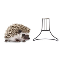 High Quality hamster toy metal Exercise train Wheel Stand for small Pets squirrel Guinea pig Chinchilla ferret rabbit Hedgehog