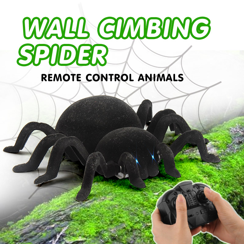 Regalo Spider RC Simulazione 11