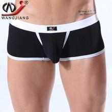 Panties Men Sexy Wangjiang Gay Underwear Ropa Interior Hombre Low Rise Cuecas Masculina Mens Cotton Pouch