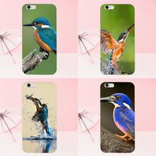 a1fc1df66c3 oothandel kingfisher bird Gallerij - Koop Goedkope kingfisher bird Loten op  Aliexpress.com