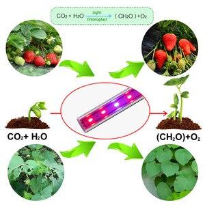 Image 4 - 110V 220V LED לגדול אור T5 צינור מלא ספקטרום LED נוקשה בר אור מקורה Phytolamp עבור צמח אקווריום חממה לגדול אוהל 5pcs