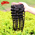 6A birmanês virgem fechamento onda profunda parte livre 4x4, Ali rainha cabelo birmanês fechamento do laço da onda profunda estilo onda profunda