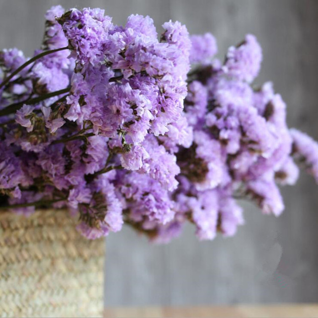 Natural Forgetting Dried Flowers Bouquet Home Decoration Real Flower ...