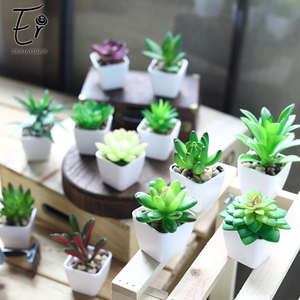 Image 2 - Erxiaobao 12 Pieces/Set Simulation Succulents Mini Bonsai Potted Green Artificial Plants in Pot Placed Home Table Decoration