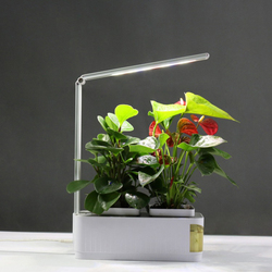 Smart bloempot Herb Garden Kit LED Licht Groeien Hydrocultuur Multifunctionele Bureaulamp Tuin Planten Bloem Hydrocultuur