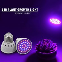 Full Spectrum E27 220V LED Plant Grow Light Bulb Fitolampy Phyto Lamp For Garden Plants Hydroponics Grow Tent Box Supplies(China)