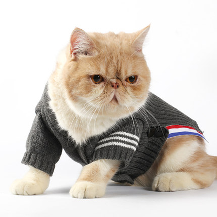 Kitten Christmas.Us 34 08 Sweater For A Cat Outfit Pet Costume Christmas Clothes Kitten Sweater Cats Clothing For Pets Dresses Chihuahua Sweaters 50myf016 In Cat