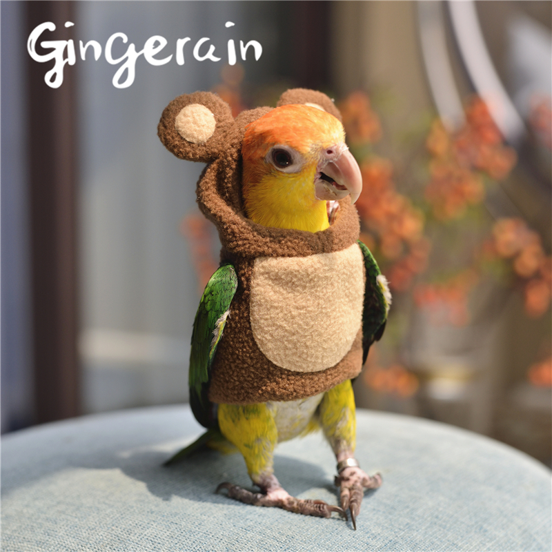 Gingerain Bird Clothes Parrot Clothes Bear Original Hand-made Custom Bird Clothes Hooded Sweater Bear