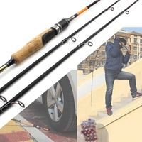 High Quality 1.8m Carbon Fishing Spinning Casting Rod 2 Tips M/MH Action Travel Rod 10 28g 8 16lb Trout Rod Free gift