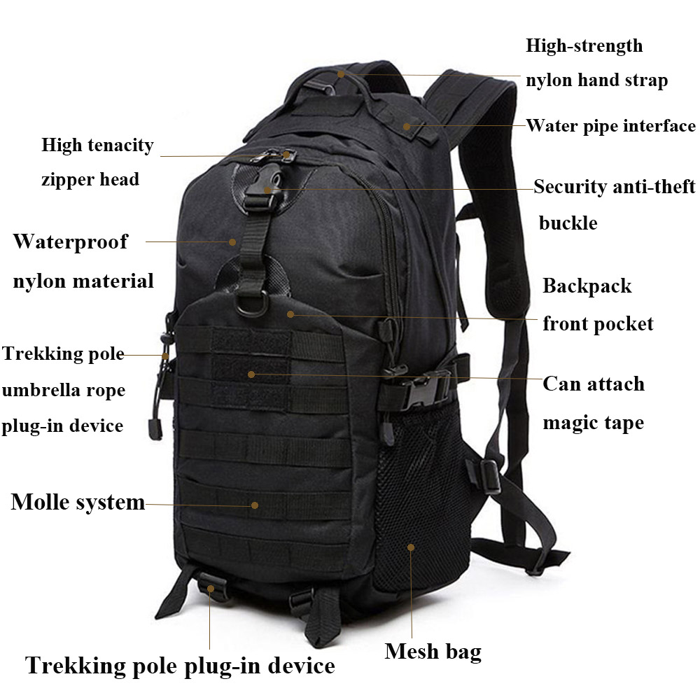 Bag Dollar Rucksack Backpack 6