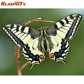 RUOPOTY 60x75cm Frame Diy Painting By Numbers Kit Animals Butterfly Coloring By Numbers Modern Wall Art Picture By Numbers