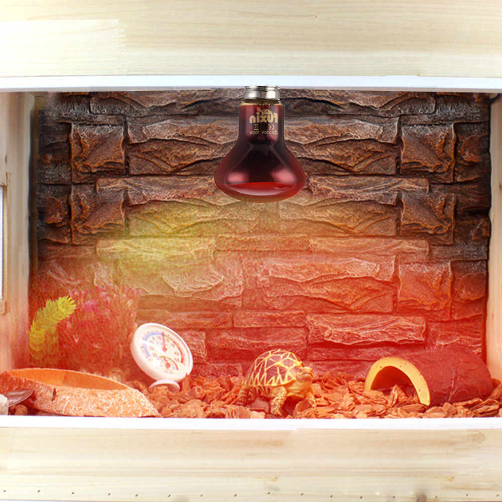 E27 Red Light  Amphibian Bird Snake Reptile Night Heating Lamp Heating And Insulation For Lizards Turtles And Snakes 2018