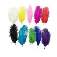 New Multi Color 10PCS Ostrich Feather Plumage 15-20cm Wedding Decoration Celebration Artware
