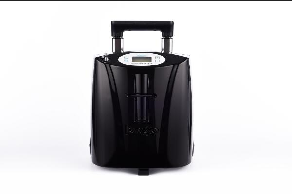 Portable oxygen concentrator-2