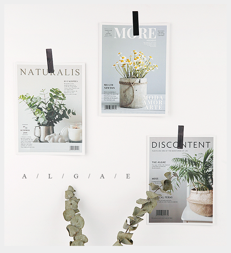 9pcs lot Magazine Flowers Picture Set Paper Card Cardboard INS Photography Background Adornment Photo Studio Shooting Backdrops in Background from Consumer Electronics