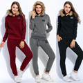 Fanala Women Pullover Hoodie And Drawstring Pant Thicken Fleece Hooded Long Sleeve Tracksuit Warm Solid Casual Women Clothes Set