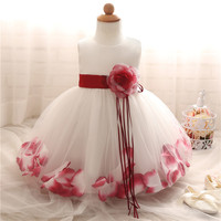 Summer Baby Clothes 2017 Christening 1 Year Birthday Party Baby Girl Dress Infant Kids Children Toddler