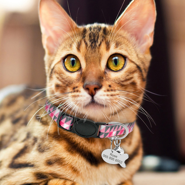 Quick Release Cat Collar With Bell Personalized Kitten Collar Breakaway Cats Safety Necklace Free Engraved Fish ID Tag Nameplate 5
