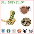 500 mg x 200 pcs Hot sale tongkat ali/Eurycoma longifolia/Cápsula de Extrato De Raiz Poder com frete grátis