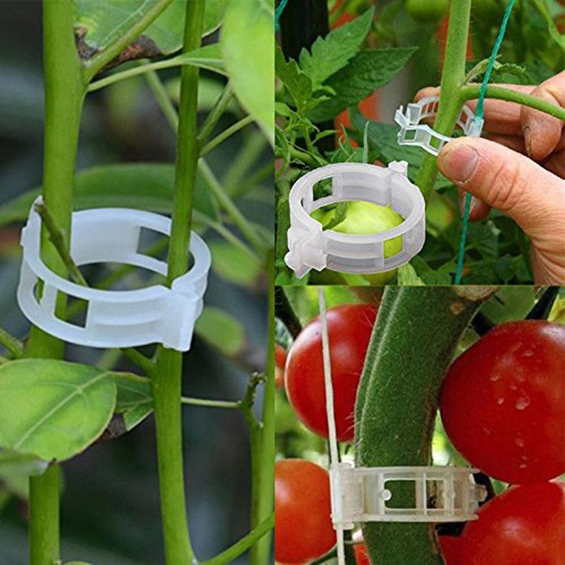 50/100pcs 30mm Plastic Plant Support Clips For Tomato Hanging Trellis Vine Connects Plants Greenhouse Vegetables Garden Ornament