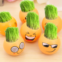 6 Pcs Set Office Miniature Potted Plants Green Grass Desktop Planting For Baby Room Or Bed