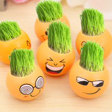 6 pcs/set Office miniature potted plants green grass desktop planting for baby room or bed room