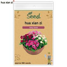HUA XIAN ZI Chrysanthème Vivace Bonsai Ornementales Graines De Fleurs Marguerite Plante En Pot pour La Maison Jardin 100 graines/sac(China (Mainland))