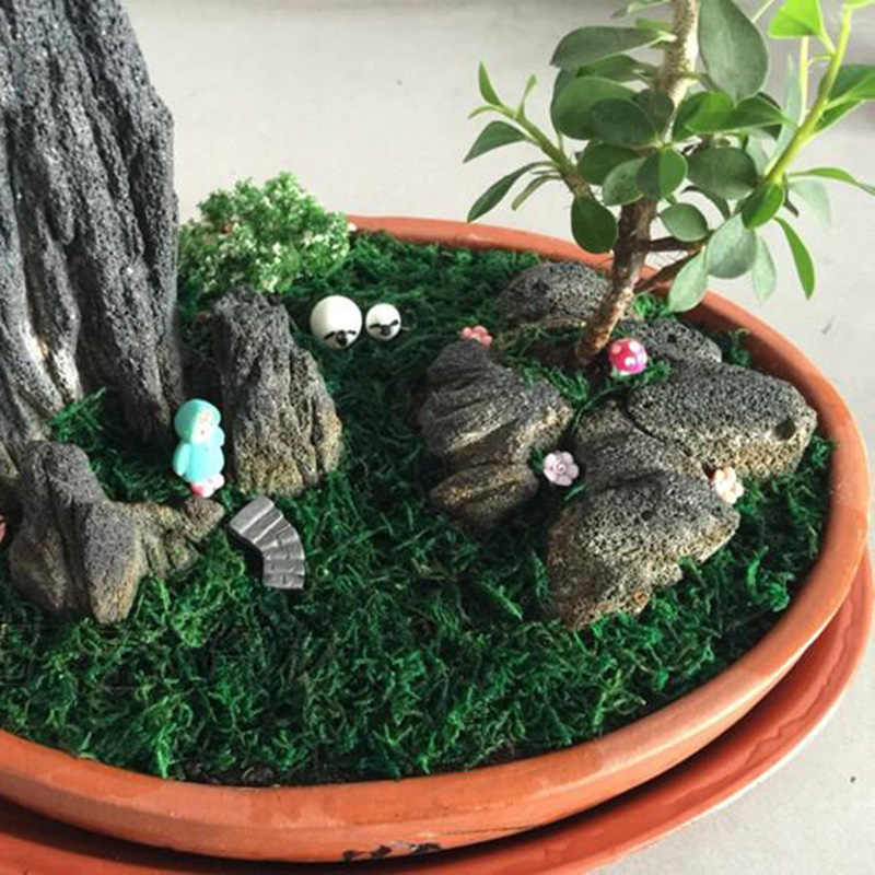 10g/20g/50g/100g/bag Keep dry real green moss decorative plants vase artificial turf silk Flower accessories for flowerpot decor