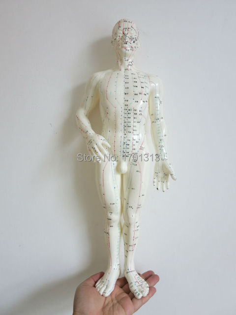 Soft PVC Human acupuncture model for herbalist doctor figurine body Chinese Acupuncture clear meridians acupuncture point