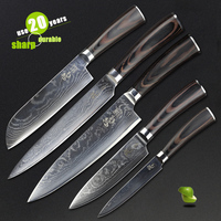 HAOYE 5 piece damascus kitchen knives set Japanese vg10 steel kitchen knife classic Cutlery ben wood handle valuable gift NEW