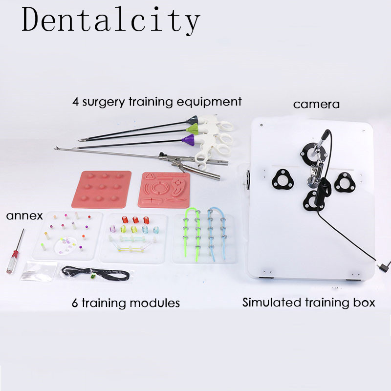 item image  New Laparoscopic surgical procedure coaching set ship four surgical devices include Needle-holding forceps And so on instructing gear