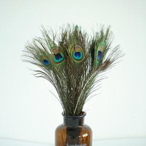 Image 1 - Hoge Kwaliteit Natuurlijke Pauwenveer 20 40 cm DIY Fotografie Props Decoratie Gevederte Ambachten voor fotostudio accessoires