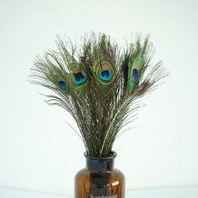 Plume de paon naturel de haute qualité 20 40 cm bricolage accessoires de photographie décoration Plumage artisanat pour accessoires de studio Photo