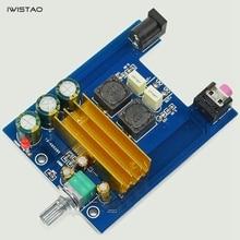 IWISTAO TPA3116 Terminou Placas Mono Amplificador Classe D Placa de Alta-potência 100 w DIY Frete Grátis