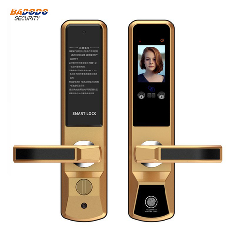 Smart face recognition electric door lock palm print door gate lock anti-theft home villa access control door lock system Lahore