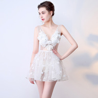 2017 Sexy Summer Dresses Sleeveless Halloween Costumes Women Cosplay Evening Party Lace Embroidery Club Ladies Sweet Girls Dress